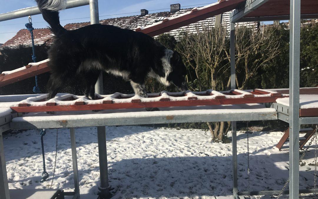 Szkolenie w zimowej scenerii.