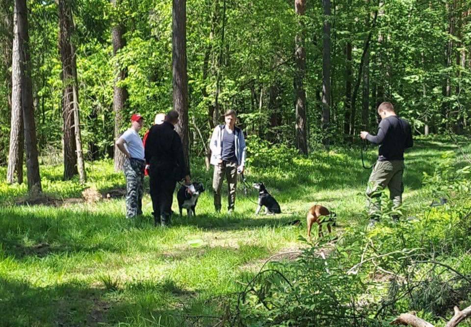 Szkolenie psów w Osowcu