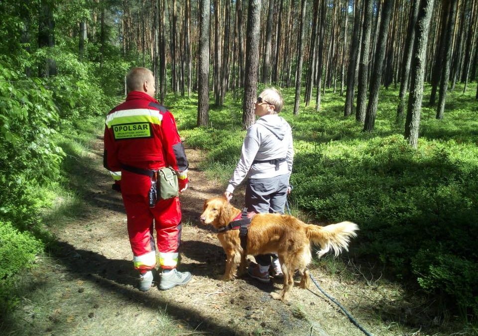Szkolenia terenowe psów w Turawie – z lokalizacji oraz posłuszeństwa.