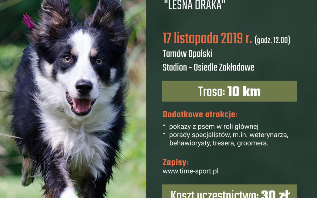 """Pierwszy Dogtrekking – w ramach IV Biegu Tarnowskiego """"Leśna Draka"""""""