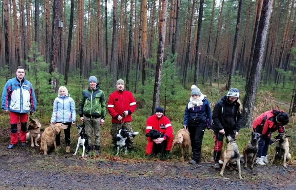 Sylwestrowe szkolenie psów