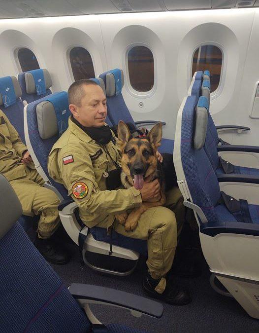 Michał i Havana, jako członkowie USAR Poland, odlecieli z misją ratowniczą do Bejrutu.