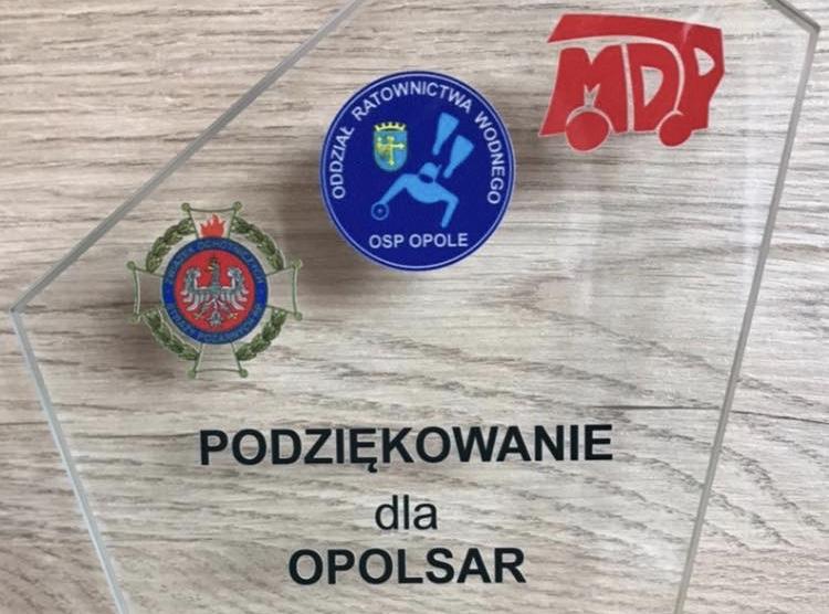 Uroczyste zakończenie obozu Młodzieżowej Drużyny Pożarniczej ORW Opole w Turawie.