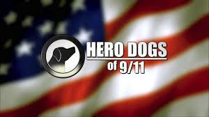 20 rocznica ataków terrorystycznych na WTC i Pentagon. Pamiętamy…